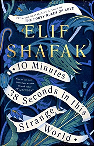 10 Minutes 38 Seconds in this Strange World by Elif Shafak 0241293871 US ED