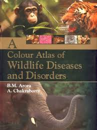 A Colour Atlas of Wildlife Diseases and Disorders by B M Arora 9788181892447